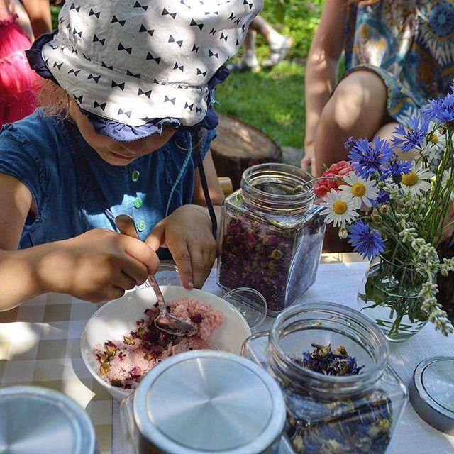 kindergarten montessori family picnic